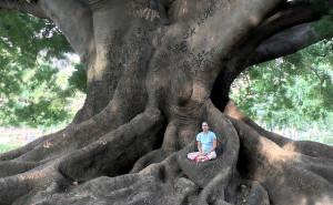 Zen Koan Meditation